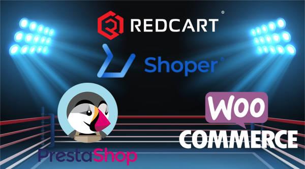 Jak otworzyć sklep internetowy w dropshipingu lub tradycyjny?